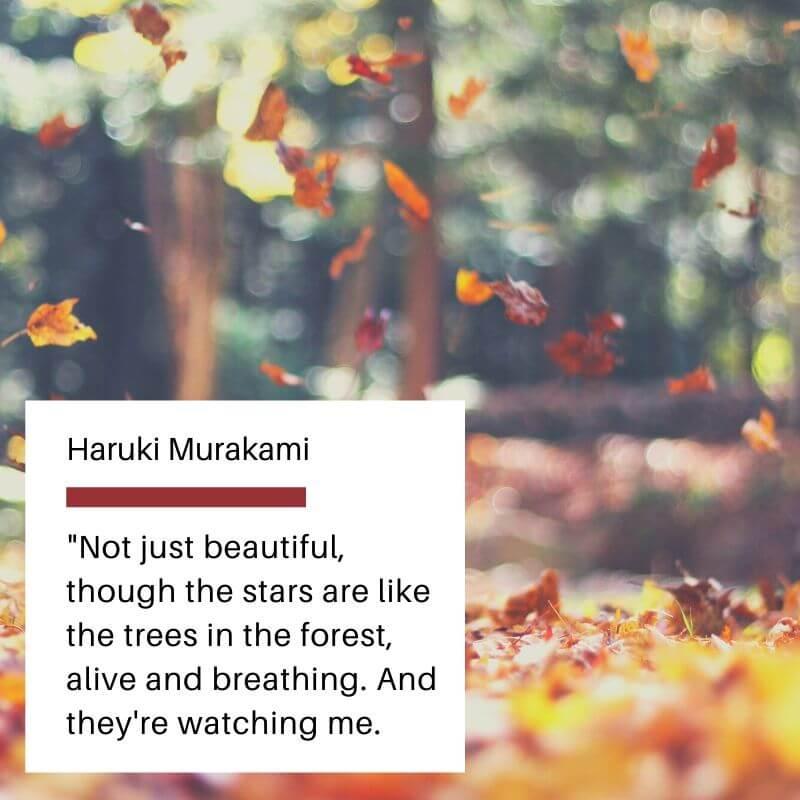 Awesome Nature Quote of Haruki Murakami