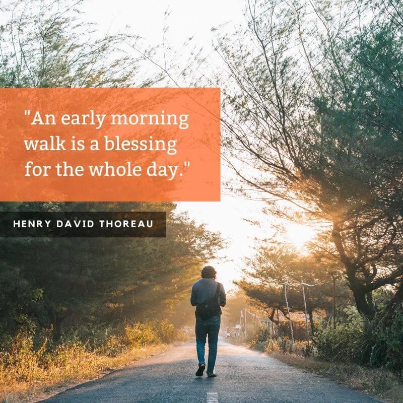 Nature Quotation of Henry David Thoreau