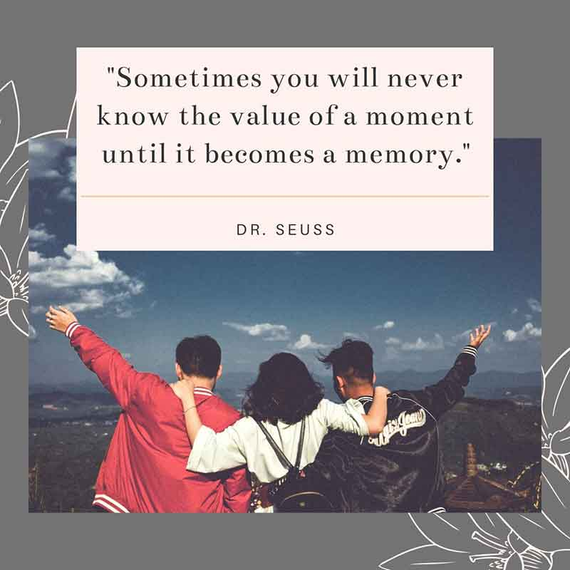 Sometimes you will never know the value of a moment until it becomes a memory. - Dr. Seuss Quote