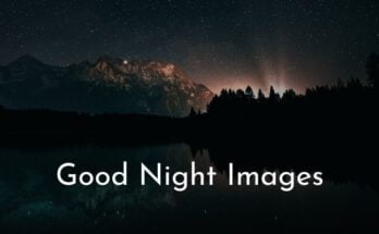 Good Night Images & Photo