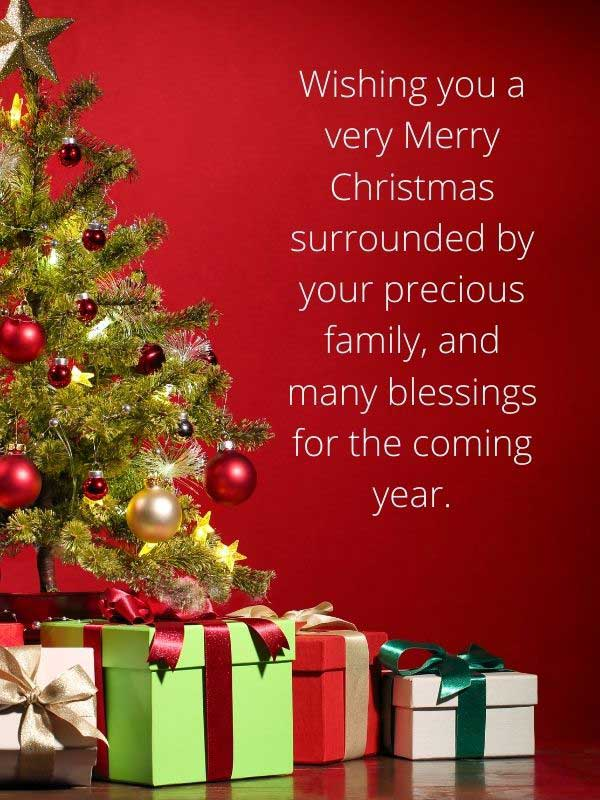 Beautiful Christmas and Happy New Year Greetings