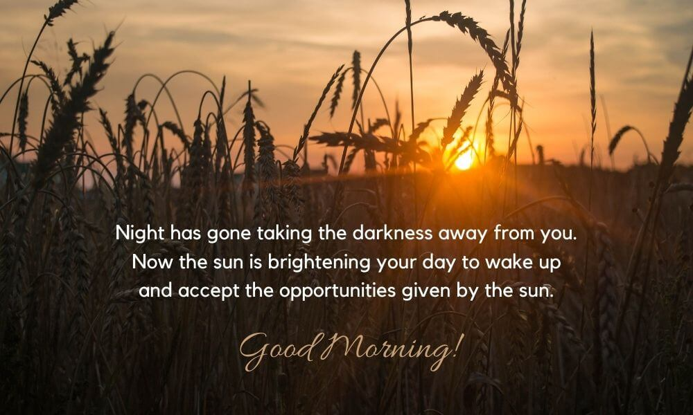 Good Morning Wish for Someone Special