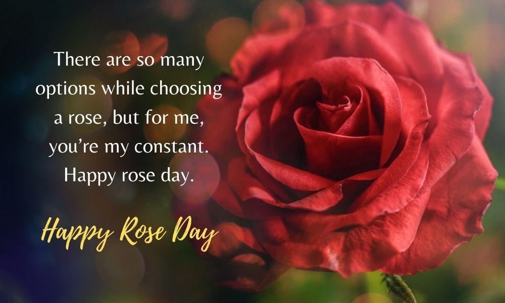 Happy Rose Day Quote Wish