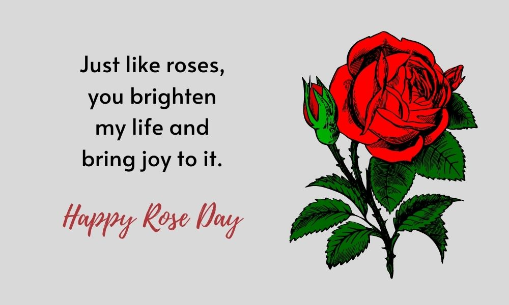 Happy Rose Day Quote