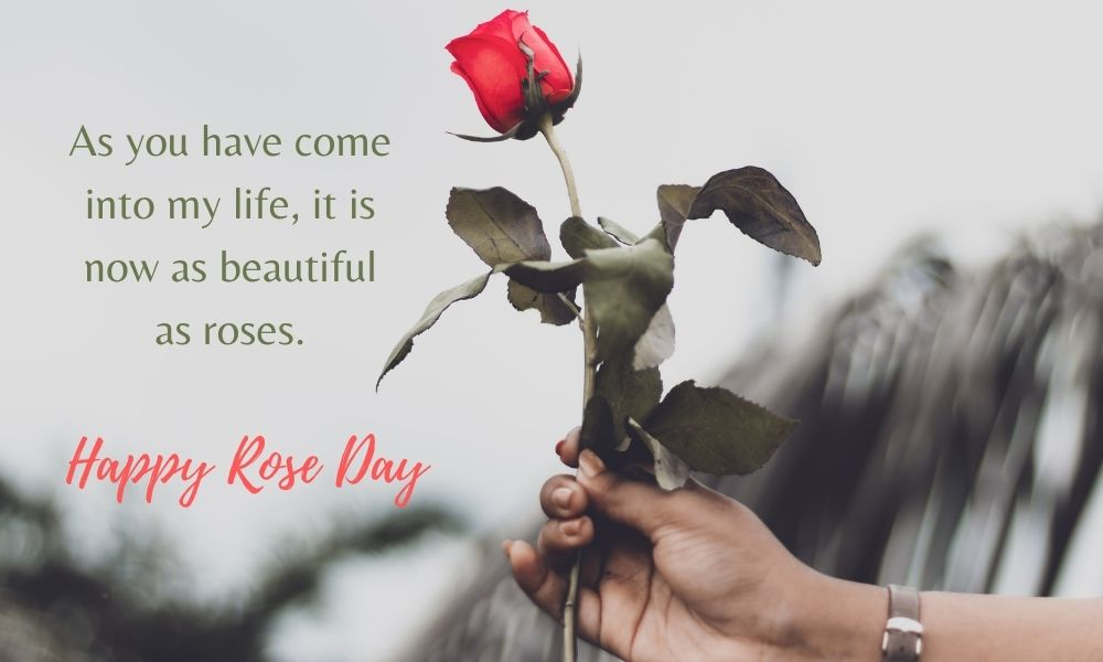 Happy Rose Day Wish for Someone Special