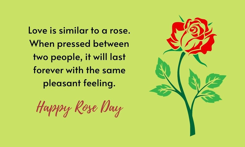Rose Day Greeting Card