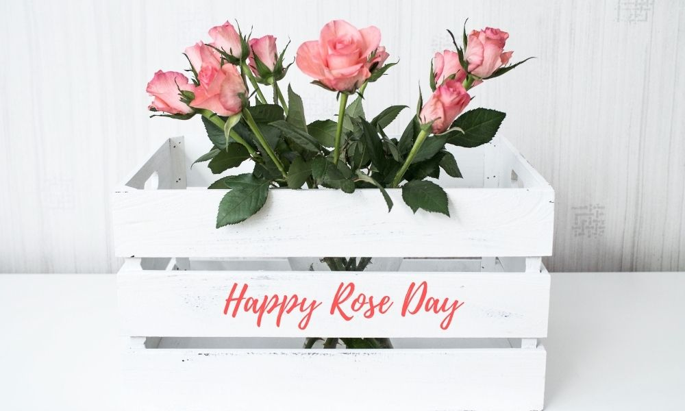 Rose Day Message Wish