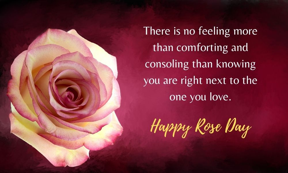 Rose Day Message for Love
